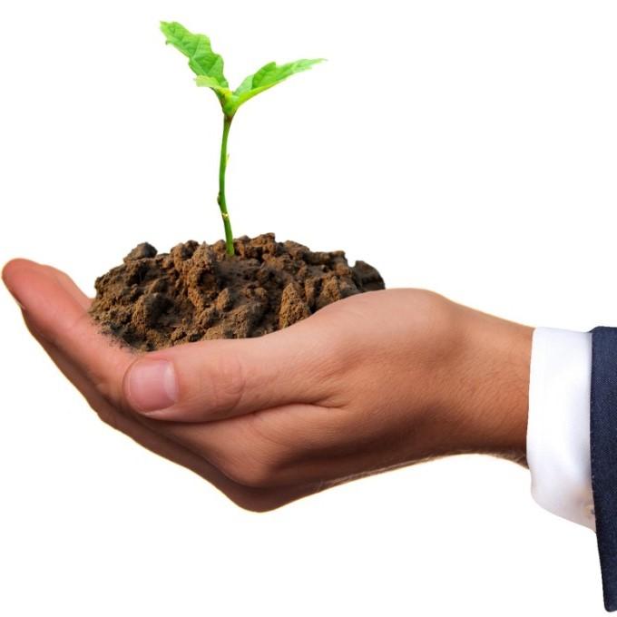 Milieu en klimaat - Foto: Sarah Richter Art (Pixabay)