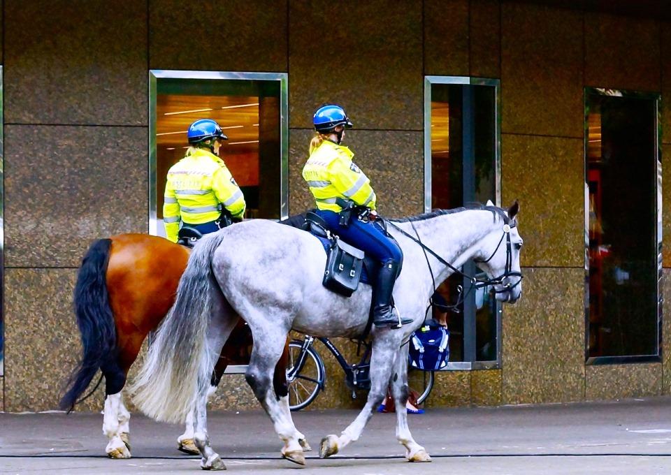 Politie te paard bij Tweede Kamer - Foto: Roel Wijnants (Flickr cc)
